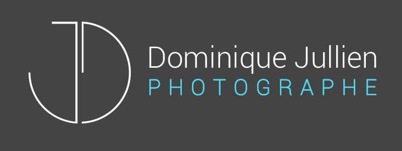 photos dominique jullien