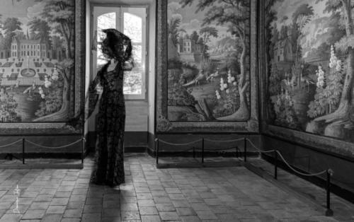Photo réalisée dans la salle des toiles peintes au magnifique village de Savennières,  à l'occasion du salon de la photo organisé par la galerie des Troismurs.